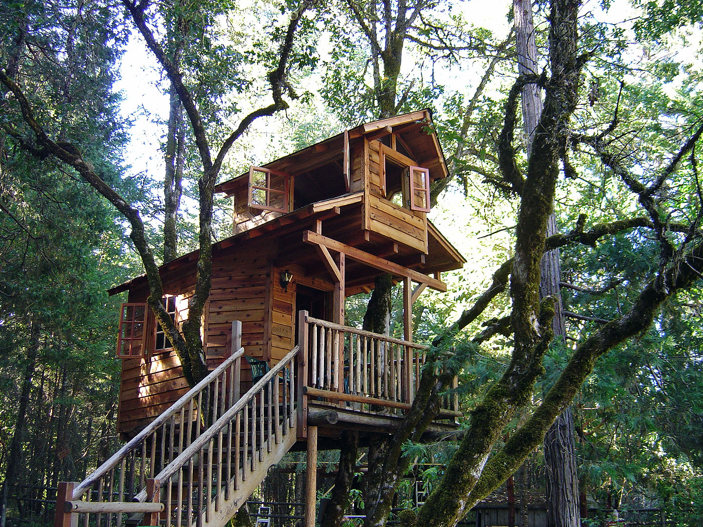 15 Pictures - Tree Houses